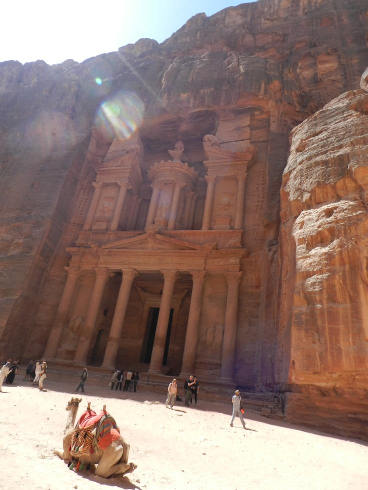 Dromadaire devant le Trésor, Jordanie