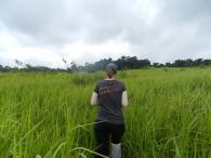 Randonnée au Parc National Khao Yai, Thaïlande